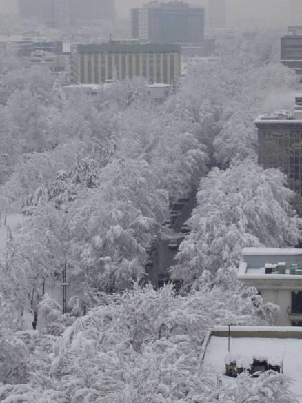 snow_in_tehran_2.jpg